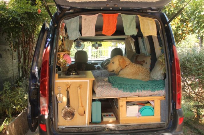 Perro sentado en la parte trasera de una van modificada para viajar