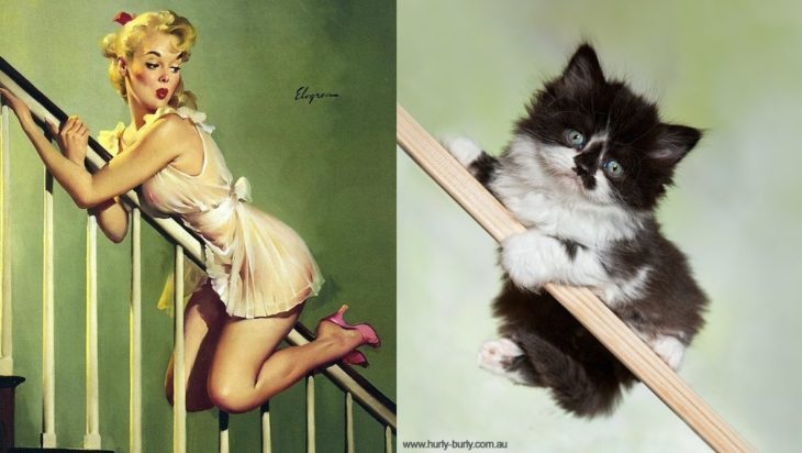 gato como chica pin-up en la escalera