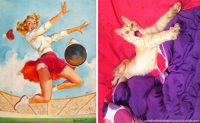 gato como chica pin-up porrista
