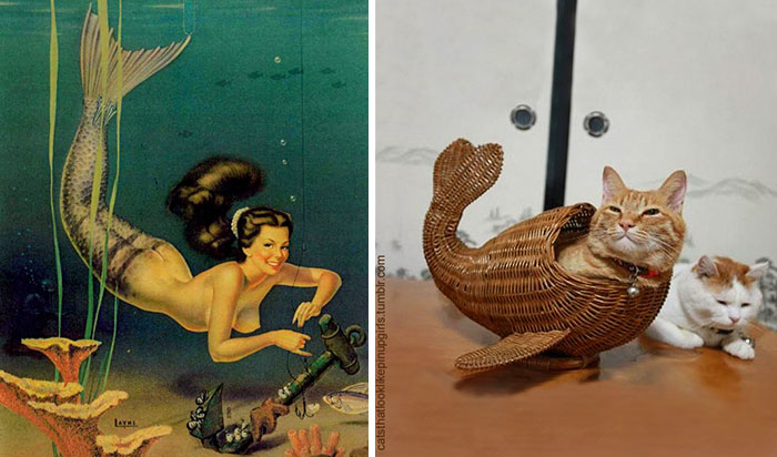 gato como chica pin-up sirena