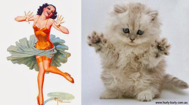 gato como chica pin-up bailando