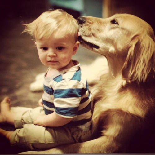 bebe con perro