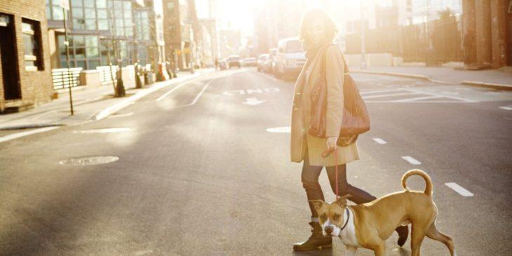 chica paseando a su perro por la calle