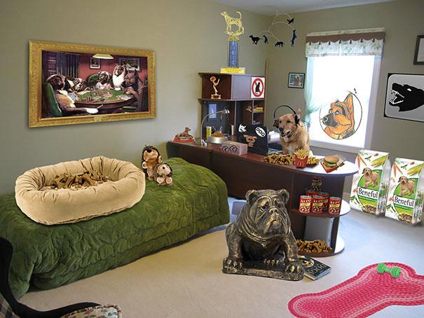 padres ceden habitación de su hijo al perro