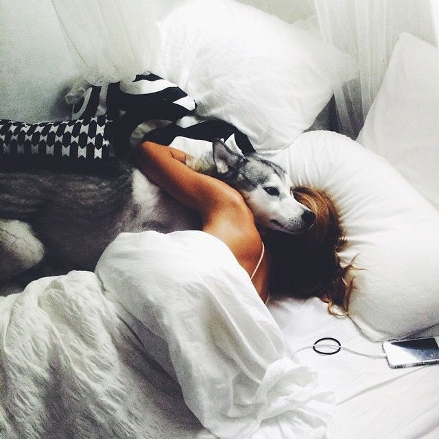 mujer abrazando a su perro husky en la cama