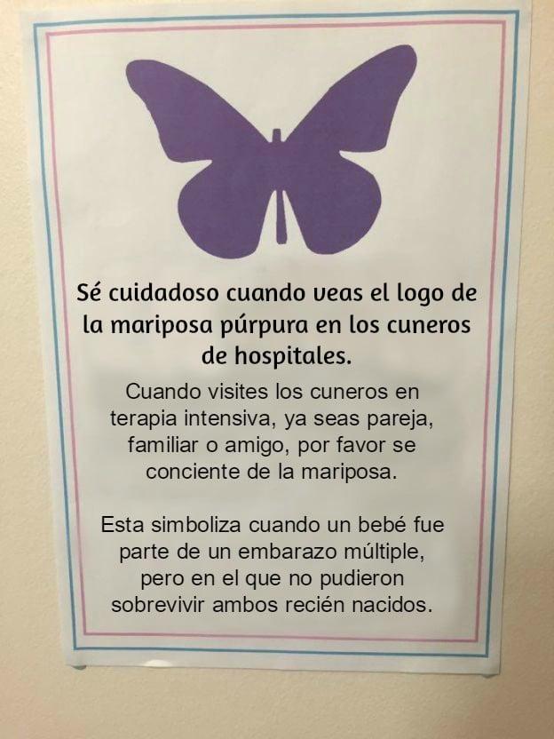 Este es el significado de la mariposa p rpura en los cuneros for Significado de cuarto