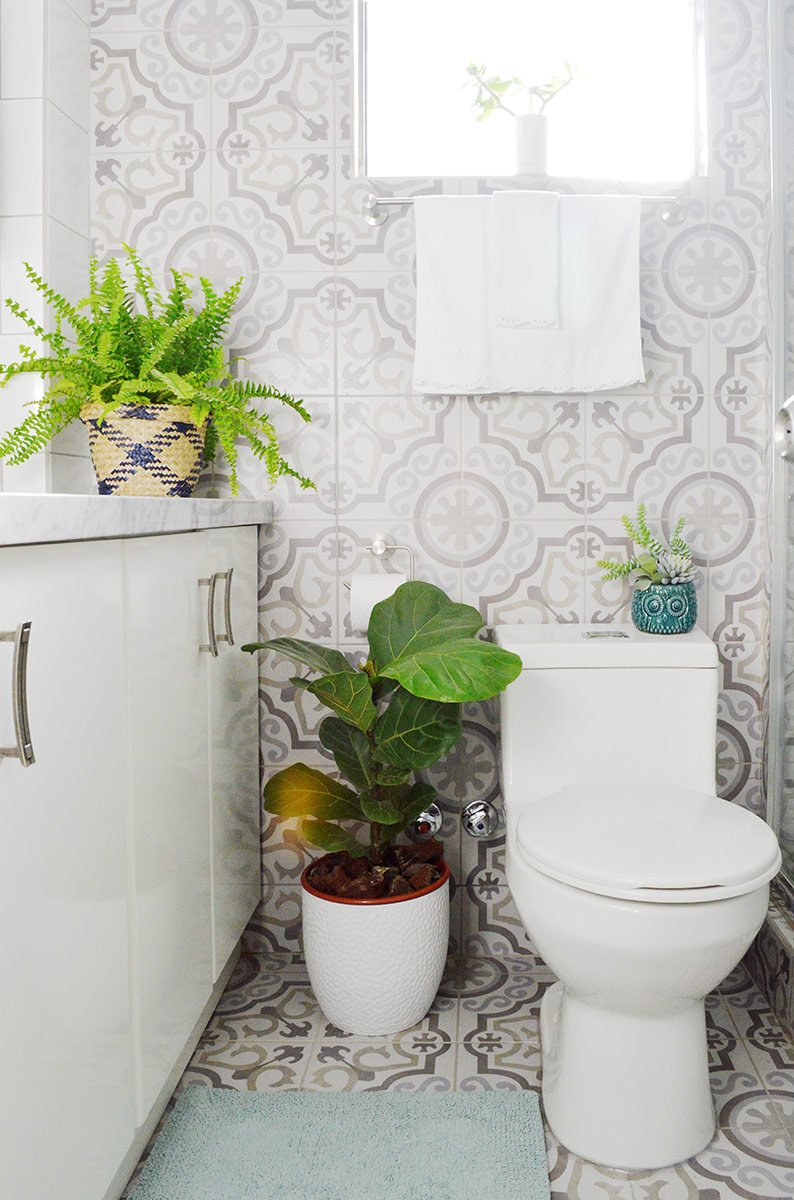 30 formas de usar plantas para decorar espacios de tu casa - Plantas en la cocina ...
