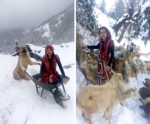 Chica junto a sus cabras y su perro en la nieve