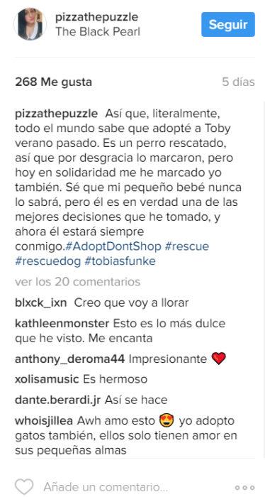 Comentarios en Instagram sobre perro rescatado