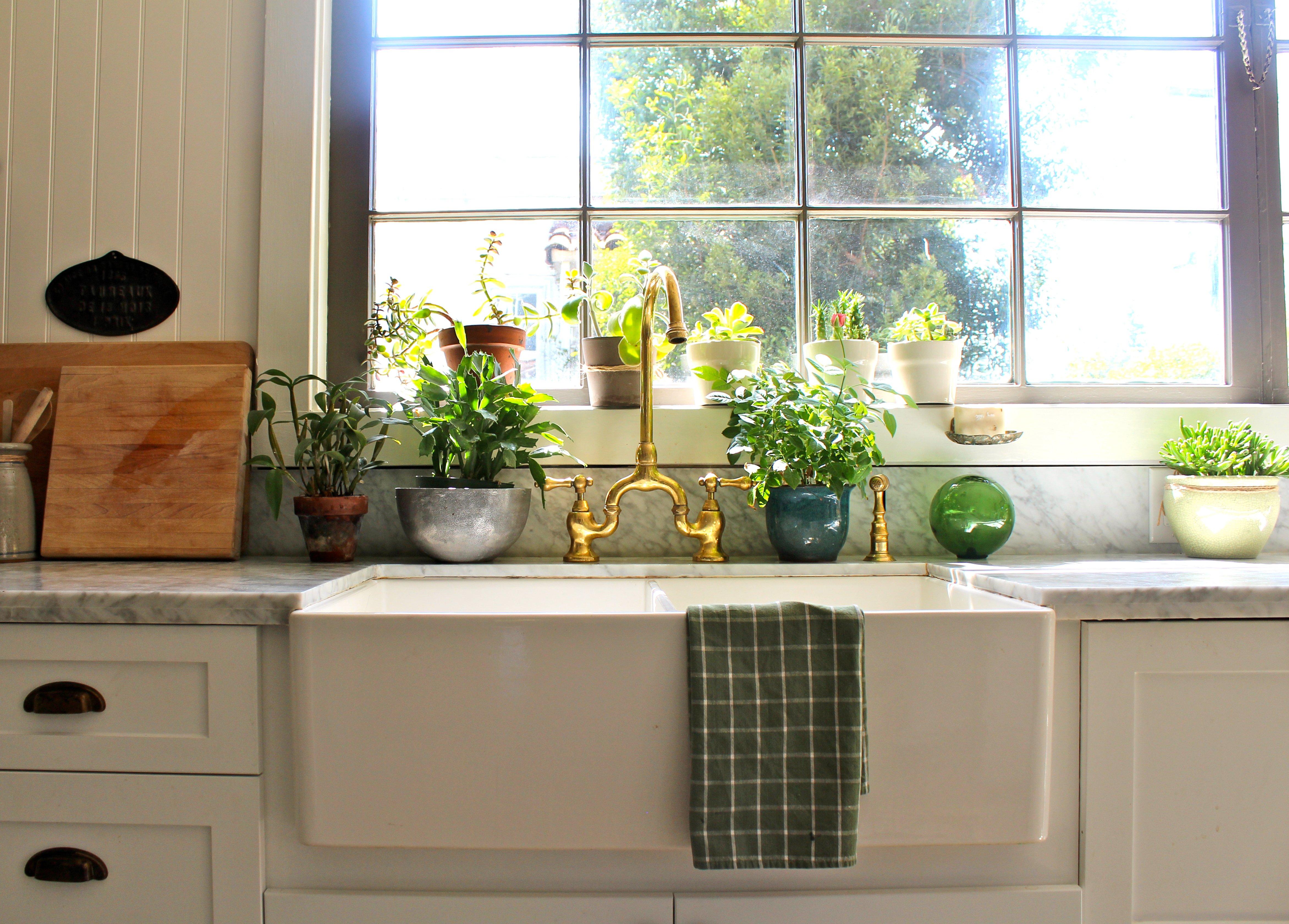 30 Formas De Usar Plantas Para Decorar Espacios De Tu Casa
