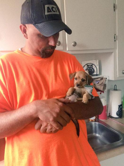 Hombre sosteniendo a un cachorrito en sus manos