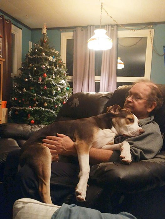 Hombre sentado en el sofá junto a su perro