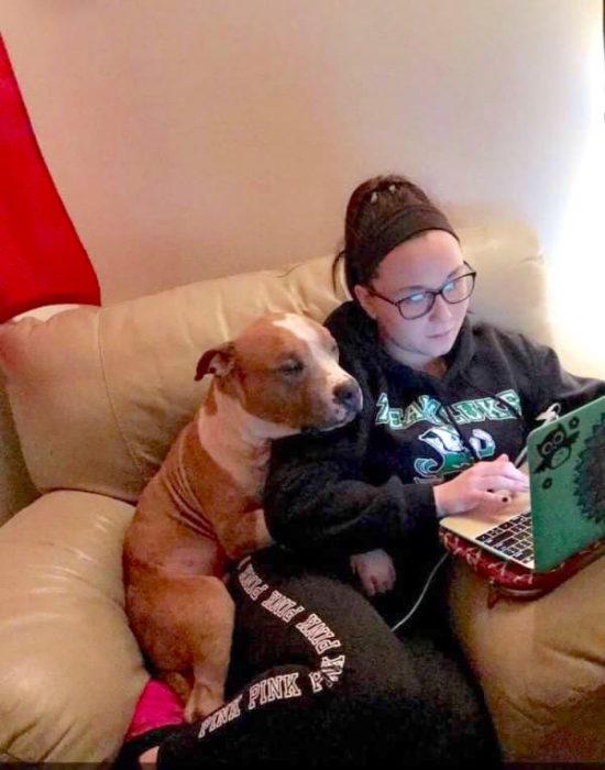 Perro abrazando a su dueña mientras están en el sofá