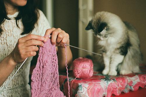 chica tejiendo con gatito