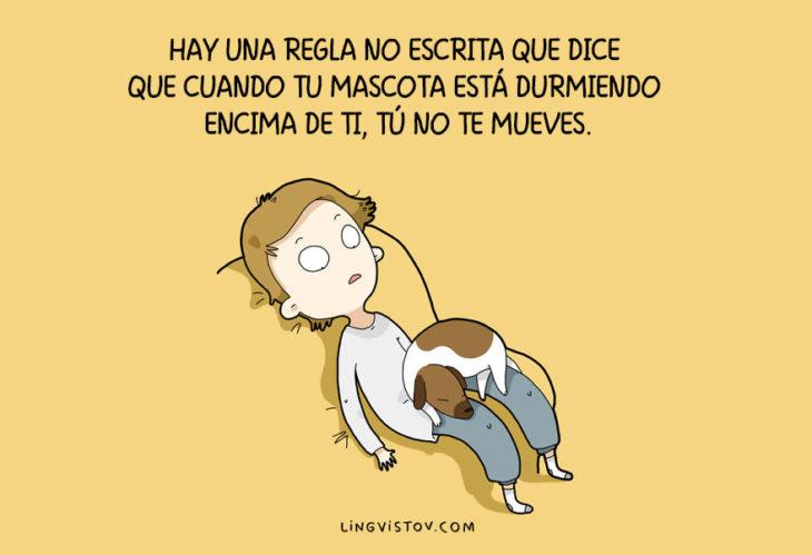ilustraciones que hablan sobre la vida de un perro