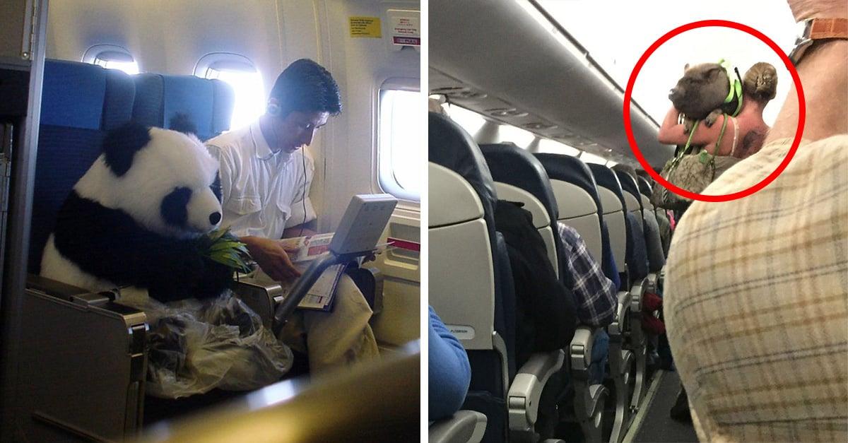 17 Momentos absurdos e insólitos dentro de un avión