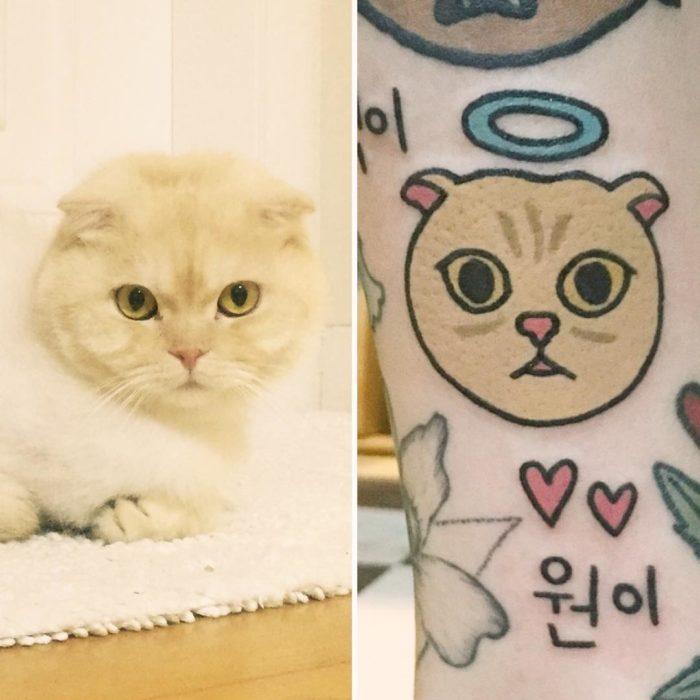 tatuaje de gato y foto de gato