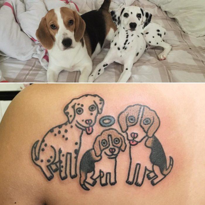 foto de perro y tatuaje de gato y foto de gato de perro