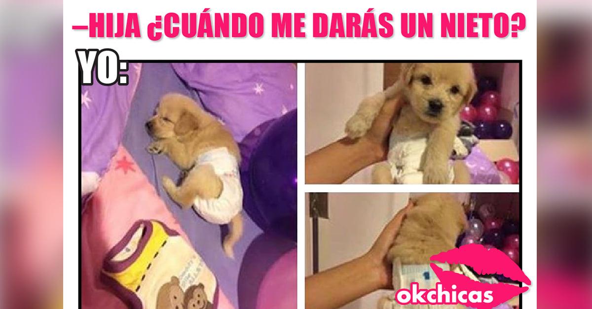 21 Incómodos momentos que viven las chicas que no soportan a los bebés pero aman a los perros