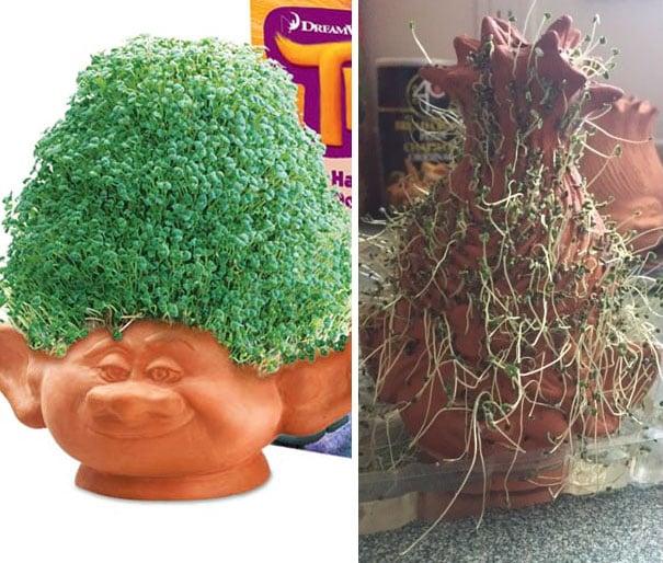 Planta en forma de troll