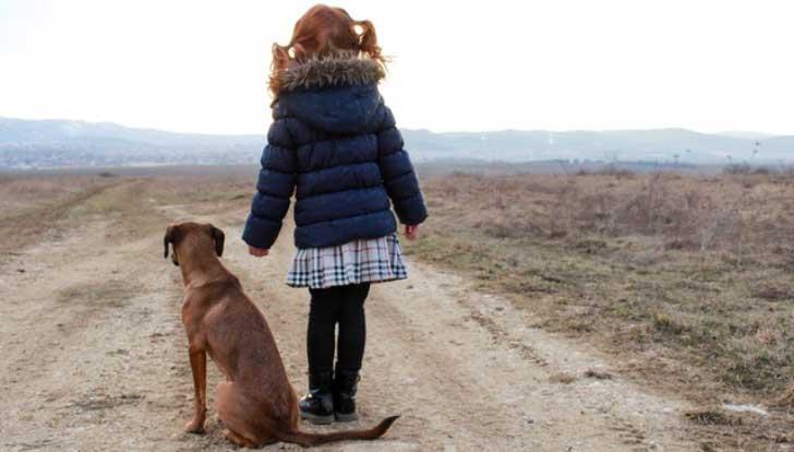 niña y perro en la carretera