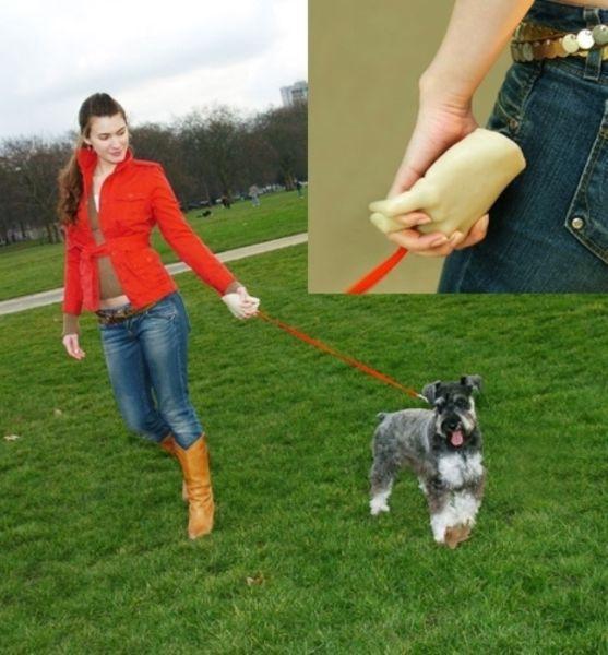 mano para pasear un perro