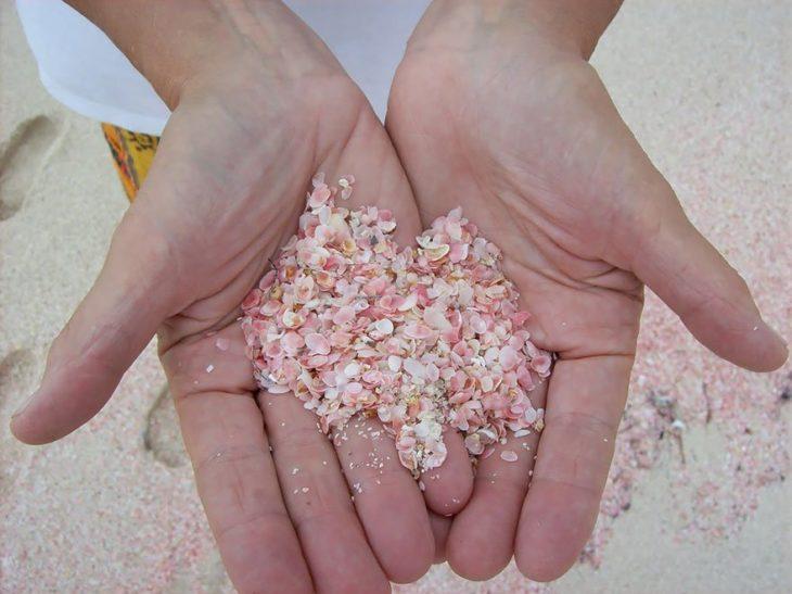La playa de arena rosa, Bahamas