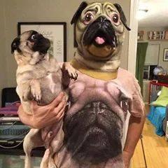 a caray perro pug