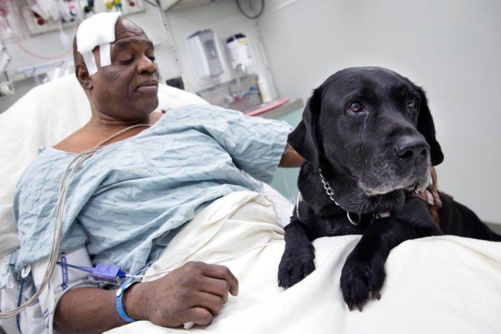 hombre acostado al lado de perro negro