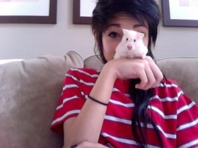 chica con hamster