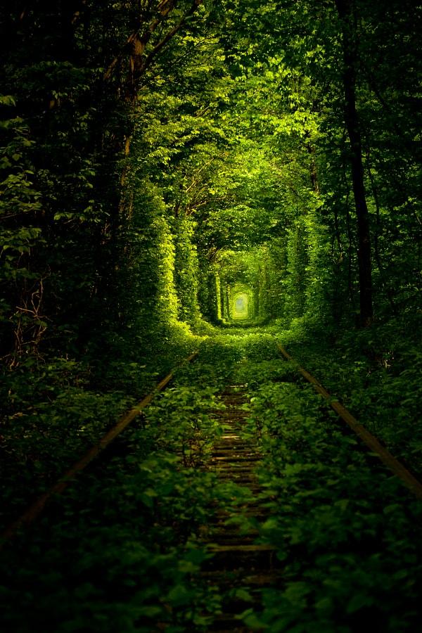 el túnel del amor en las vías del tren de ucrania