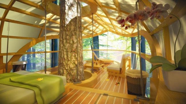 habitación con árbol