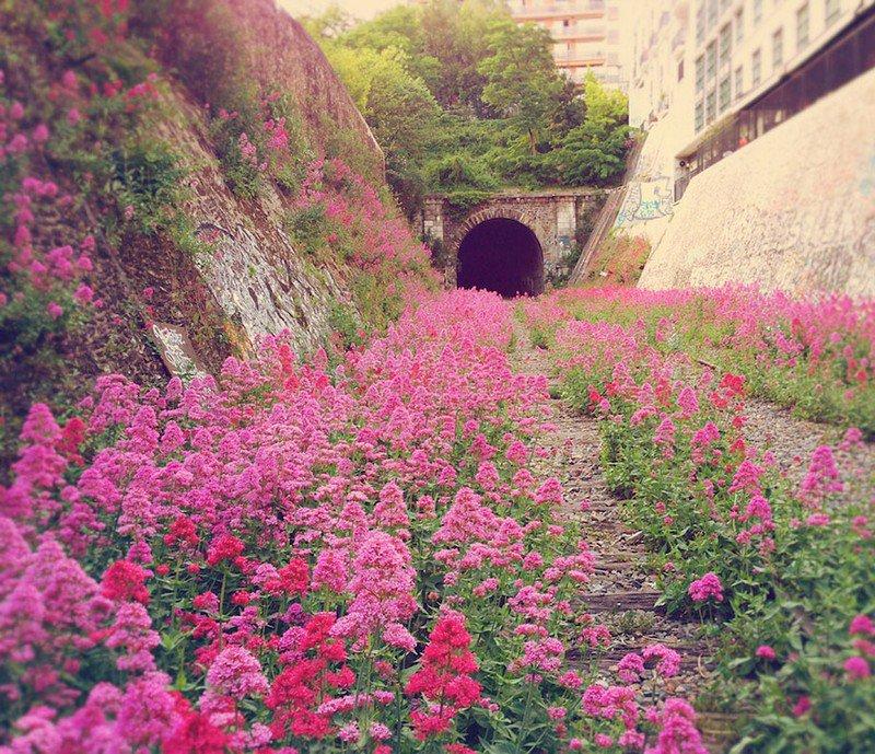 línea ferroviaria abandonada en el interior de Paris