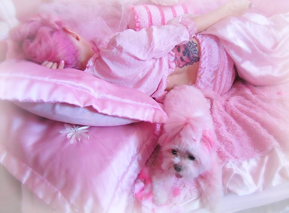 la cama de kitten kay sera
