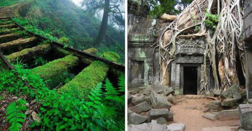 25 Fantásticas construcciones del hombre reclamadas por la naturaleza