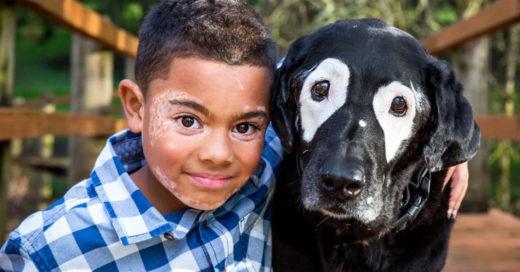 Supera la depresión gracias a su nuevo mejor amigo: un perro con su misma enfermedad