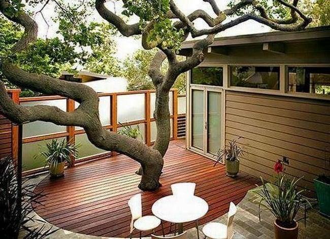 piso de madera con árbol