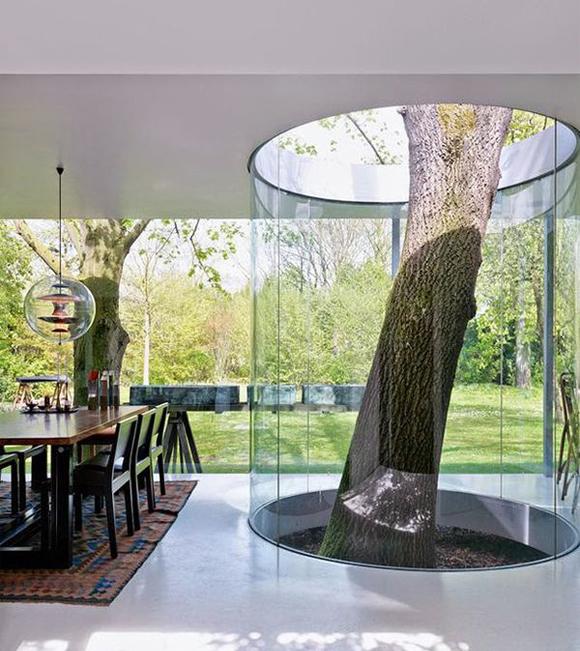 tubo con árbol