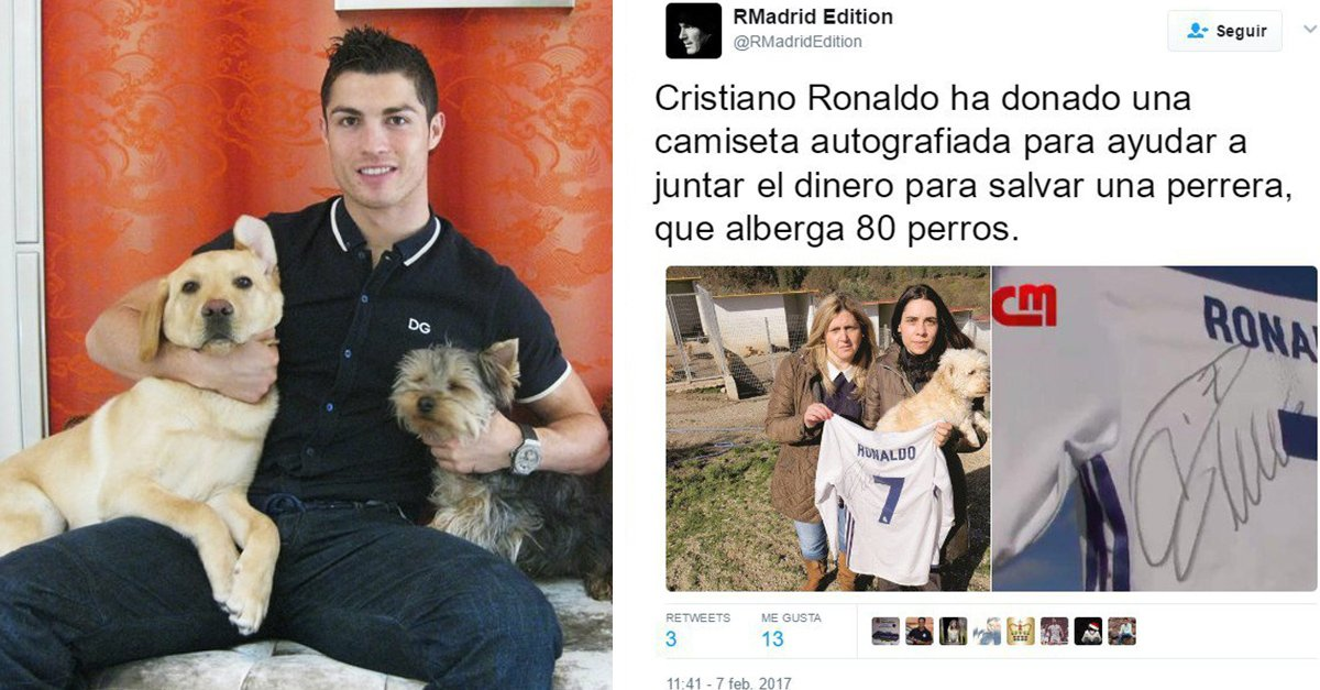 Cristiano Ronaldo salva a 80 perros de perder su hogar