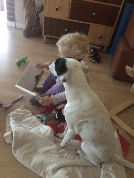 niño contandole cuento a un perro