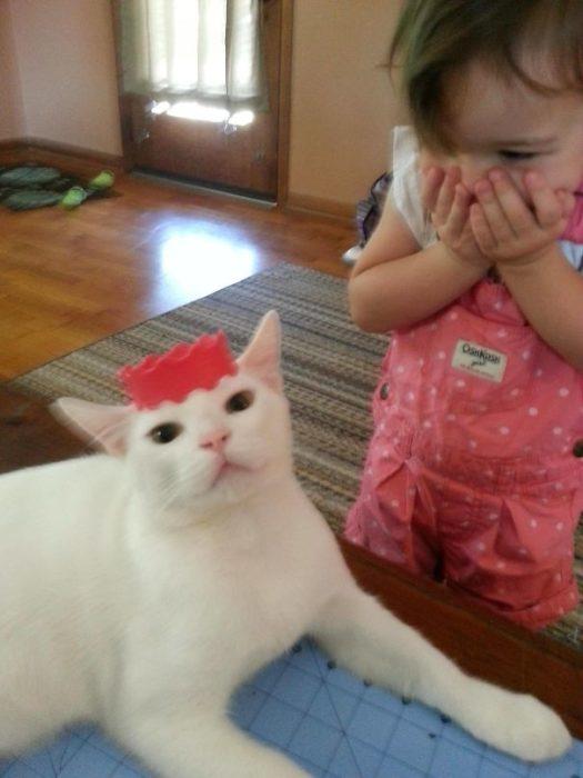 niña con gato princesa