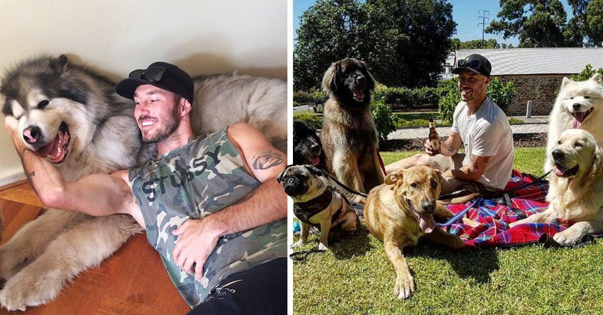"""Este es el """"chico loco de los perros"""" y su misión es rescatarlos Este es el """"chico loco de los perros"""" y su misión es rescatarlos"""