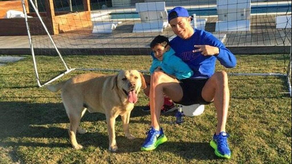 cristiano ronaldo perros 2