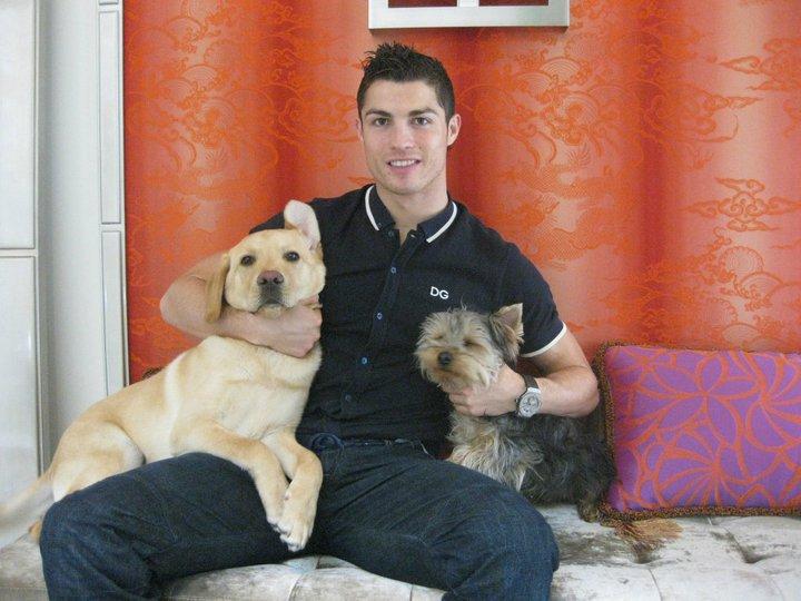 cristiano ronaldo perros