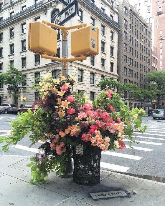 flores lewis miller