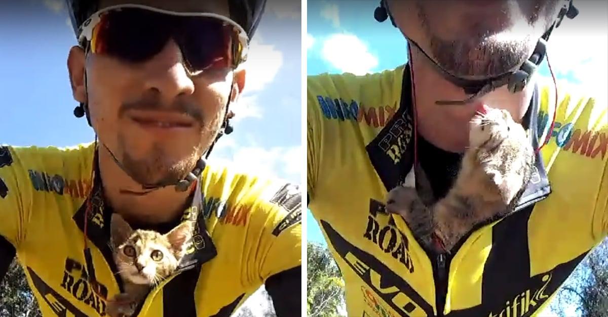 Ciclista salva la vida de un pequeño gato; Internet se derrite de ternura