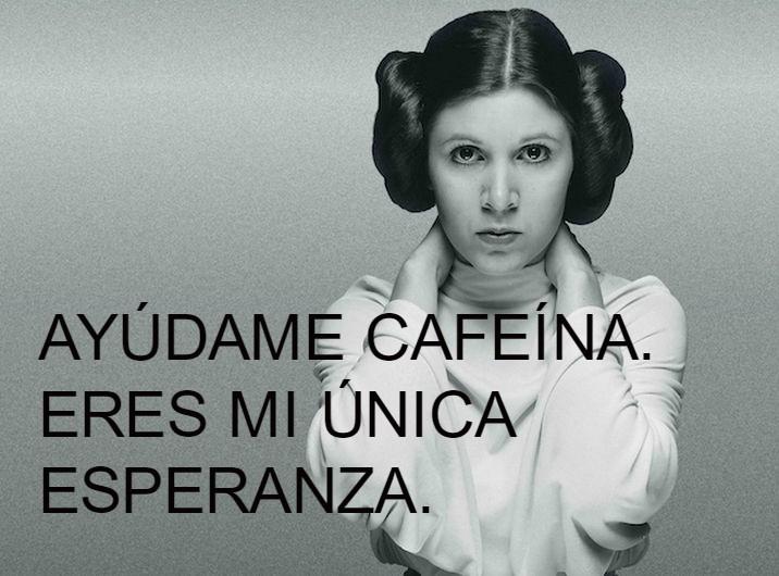 memes café 5