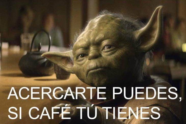 memes café 8