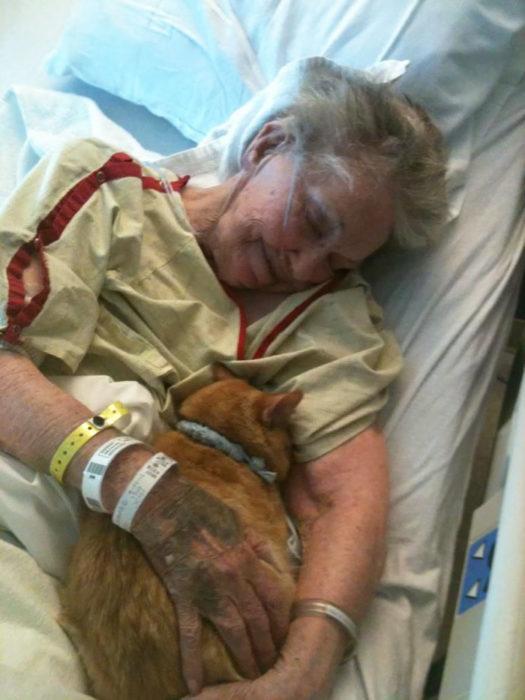 anciana con gato