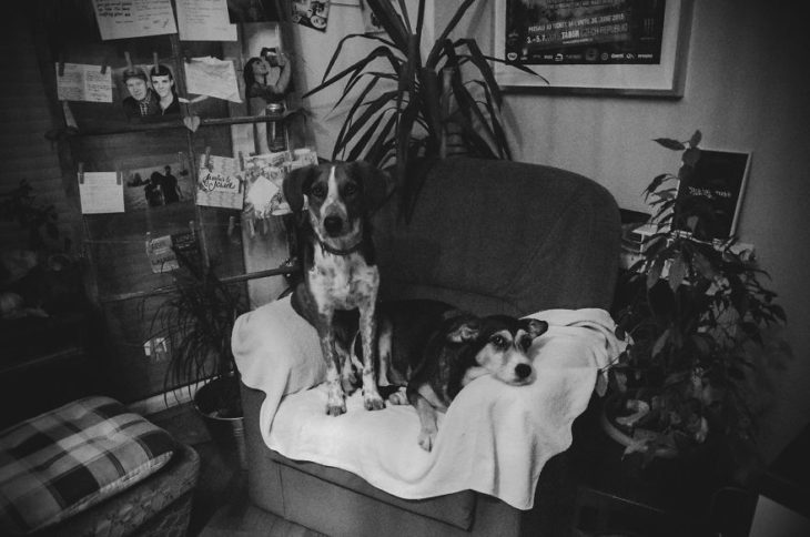 fotografías de Jasmina Povse